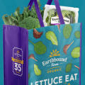 earthbound shopping bag