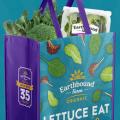 earthbound shopping bag