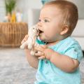 infantino playtime pal llama