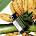 lartisan parfumeur paris bana banana fragrance