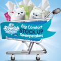scotties big comfort stockup sweepstakes