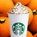 starbucks pumpkin spice latte drink